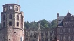SEO Agentur für Heidelberg – mit Local SEO überzeugen