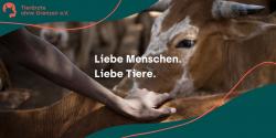 Tierärzte ohne Grenzen e. V. erstrahlt in neuem Glanz.