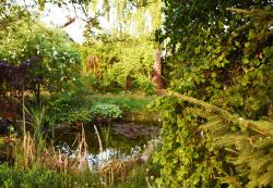 Gartengestaltung: Gartenbau, Gartenpflege