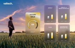 Valtech wird mit der EcoVadis-Goldmedaille zur Green Agency gekürt